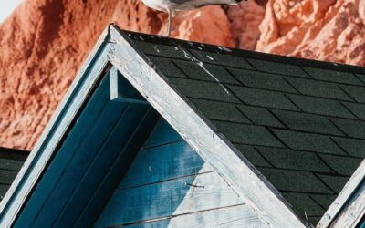 Roofing Disasters And How To Avoid Them